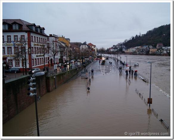 Затопленный Гейдельберг (Heidelberg)