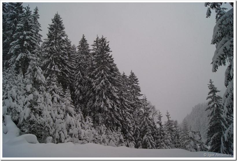 Австрия 2012. Зима
