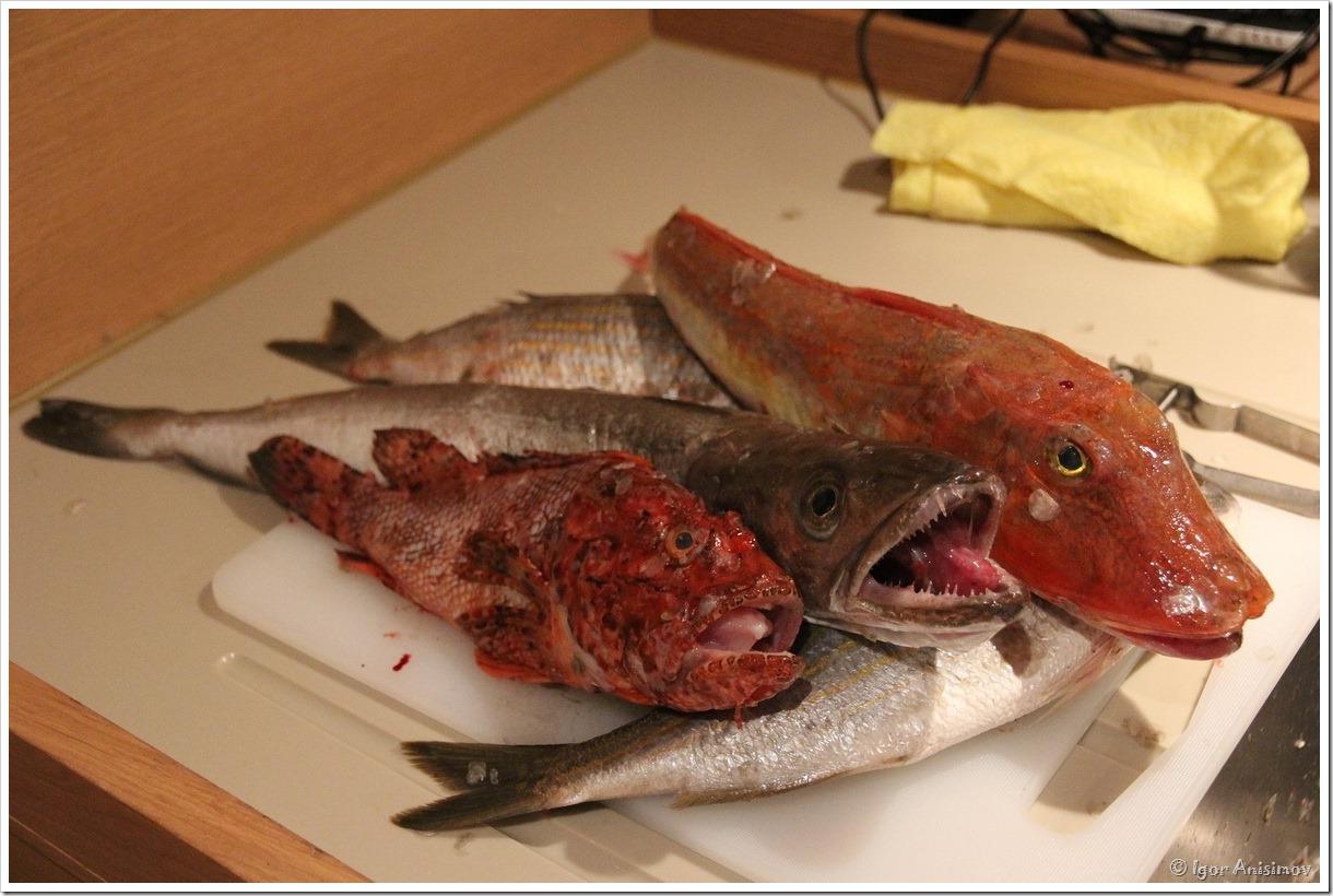 Хорватия 2015. Питание в путешествии на яхте